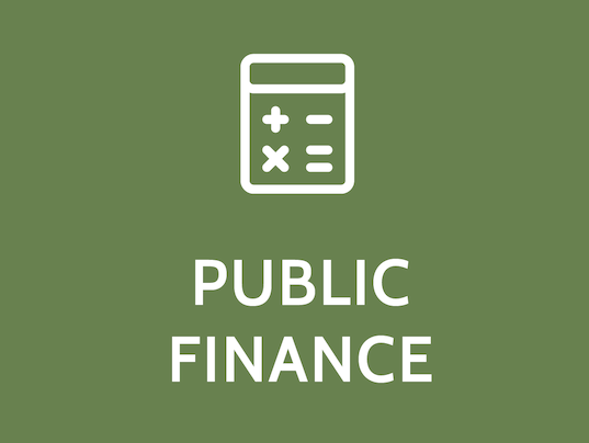 an introduction to public finance Public expenditure management (fall) accounting and financial management1  (fall) local government system (fall) introduction to public policy studies.