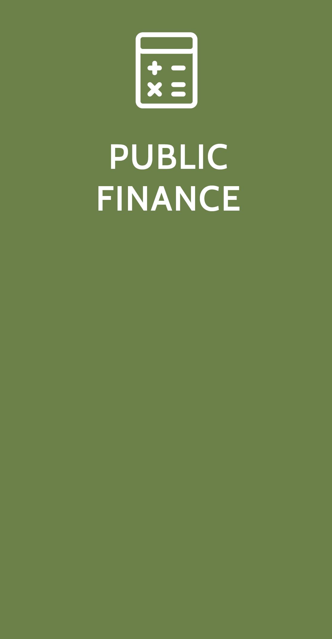 Public Finance Study